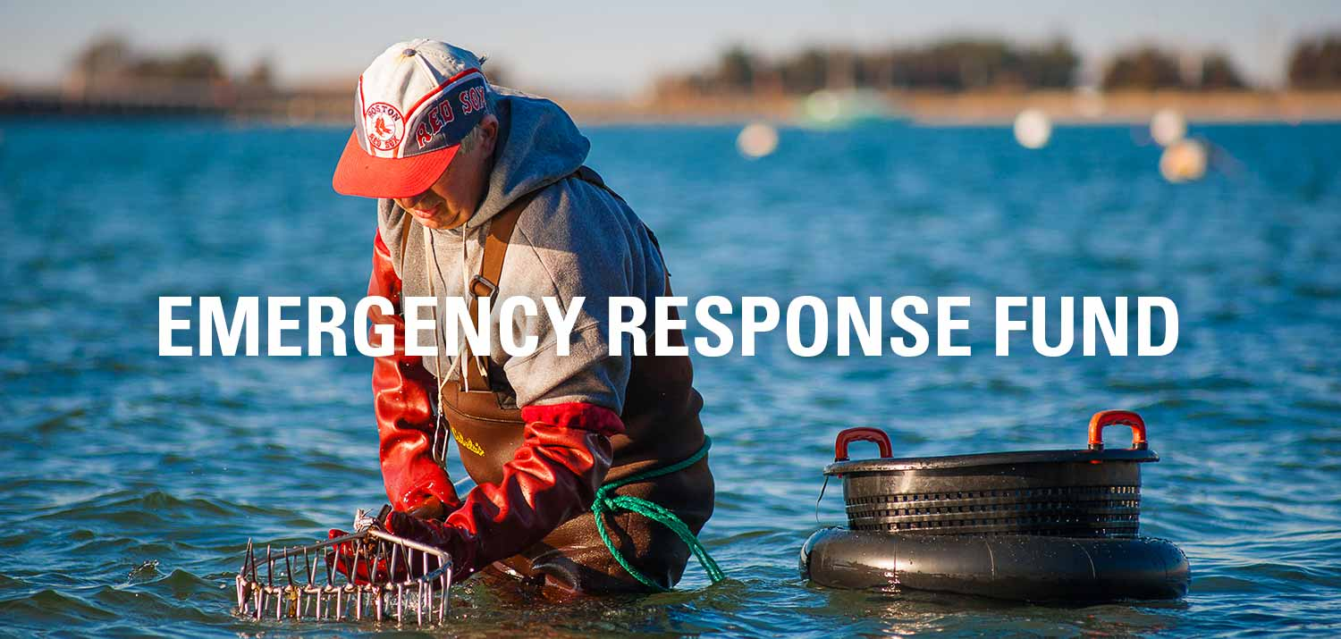 MV Emergency Response Fund